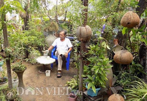 "vuon ""thuong uyen"" kieng treo sinh thai tu trai dua kho - 1"