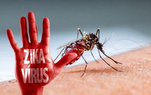 tin moi nhat ve truong hop nguoi viet nhiem virus zika o nhat ban - 1