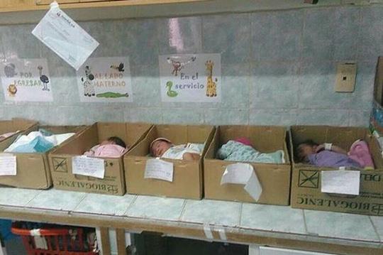 """venezuela: tre so sinh bi """"dat trong thung giay"""" tai benh vien - 1"""