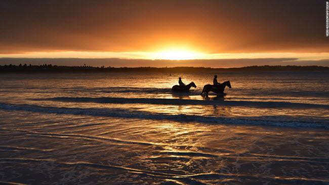 Warrnambool, Australia: Du khách cưỡi ngựa dưới ánh hoàng hôn trên bãi biển Lady Bay.