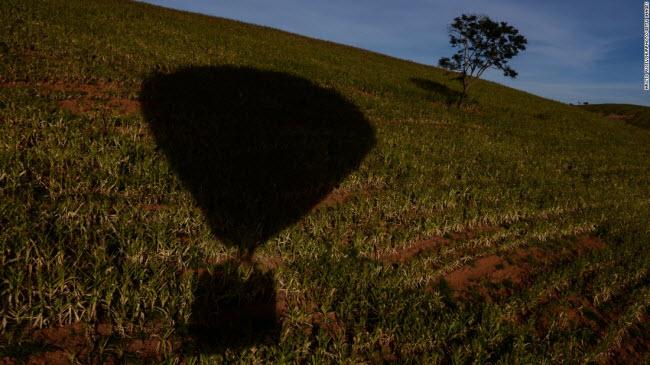 São Lourenço, Brazil: Những người thích khám phá có thể trải nghiệm ngắm cảnh bằng khinh khí cầu tại São Lourenço, Minas Gerais.