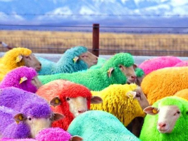 Xem bói ngày sinh để tìm ra ngay màu sắc may mắn, giúp bạn làm gì cũng thành công