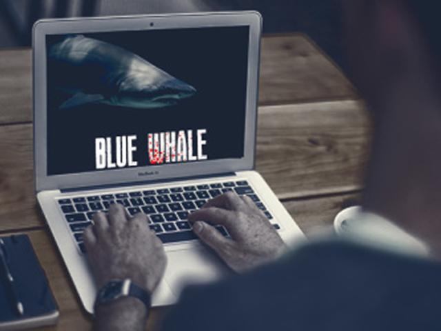 Thử thách cá voi xanh - trò chơi nguy hiểm khiến 130 người trẻ tự sát