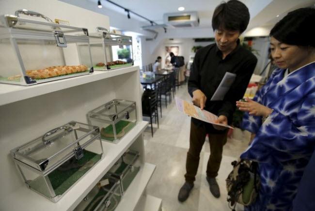 Khi vào quán, du khách sẽ thấy hàng chục con rắn nhiều màu sắc trong những chiếc hộp nhựa tại cửa ra vào.