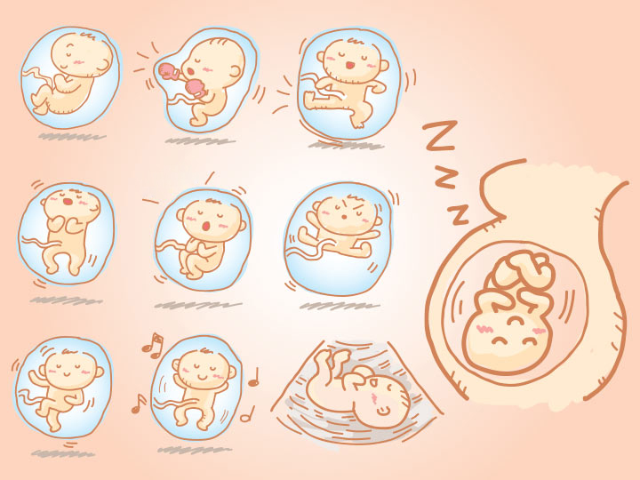 Kết quả hình ảnh cho thai nhi không chuyển động