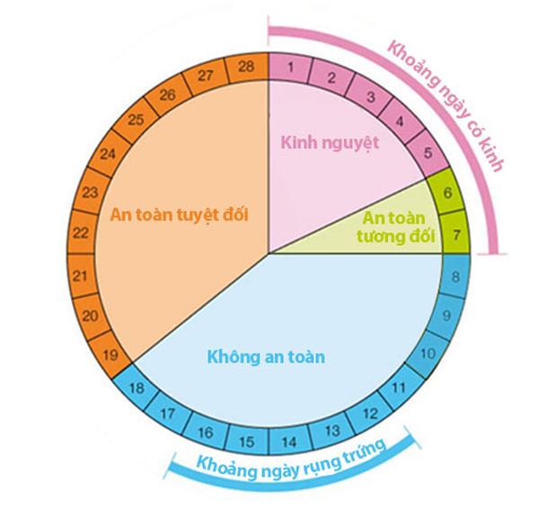 Cách tính vòng kinh để tránh thai, thụ thai hiệu quả - 3