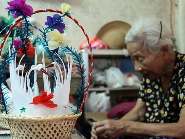 Gia đình 70 năm nuôi thiên nga bông giữa lòng Hà Nội