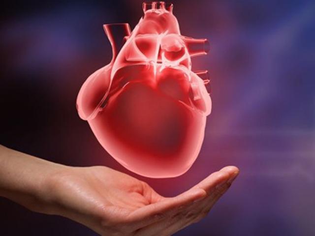 Dấu hiệu cảnh báo đau tim không nên bỏ qua