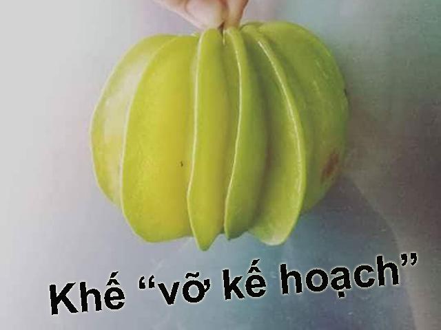 Tuyển tập trái cây đem biếu nhà chồng, đảm bảo ấn tượng dài lâu