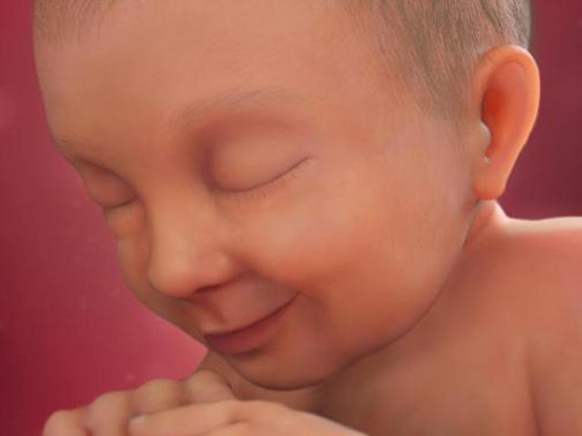 Thai nhi 37 tuần tuổi: Não và phổi của bé tiếp tục hoàn thiện