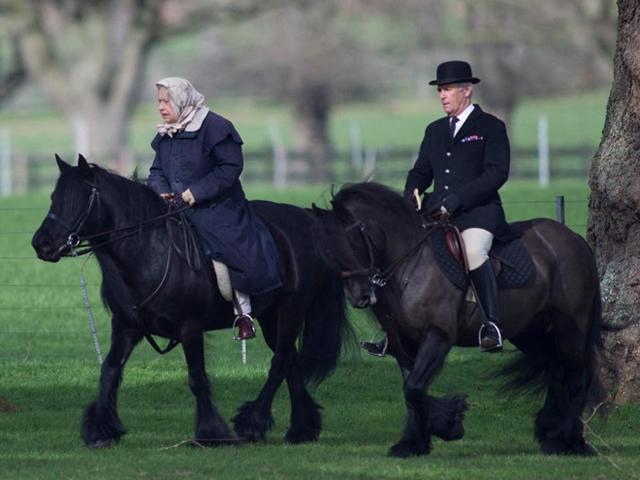 Bí quyết sống thọ tới 92 tuổi vẫn cưỡi ngựa như thường của Nữ hoàng Anh ai cũng muốn học