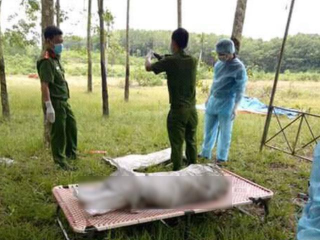 Nghi án giết người: Thi thể người phụ nữ bốc mùi hôi thối trong bao tải tại vườn cao su