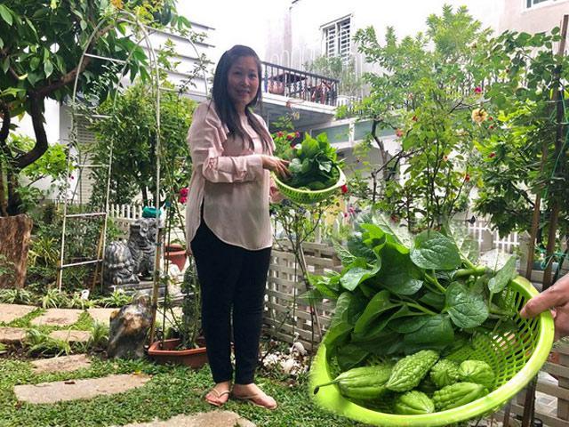 Ngắm vườn rau xanh mướt ai nhìn cũng mê của vợ chồng nghệ sĩ Hồng Vân - Lê Tuấn Anh
