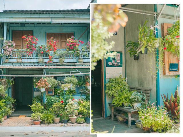 Có một ngôi nhà hoa lá quá bình yên ở An Giang khiến ai cũng mơ Nhà tôi ở đó