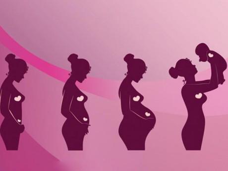 Các giai đoạn phát triển của thai nhi từ khi thụ thai đến lúc chào đời