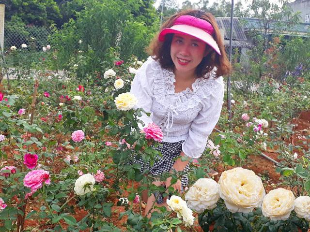 Từ trồng cho vui để ngắm, bà mẹ Sơn La giờ có vườn hồng khủng đáng giá vài tỷ đồng