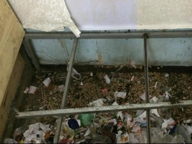 Hai nữ sinh xinh đẹp ra ngoài ăn diện sang chảnh nhưng gầm giường lại ngập ngụa rác thải