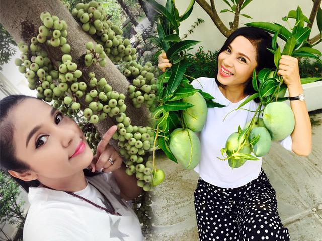 Thăm nhà vườn yên bình đủ loại rau trái sai trĩu của Người đẹp Tây Đô Việt Trinh