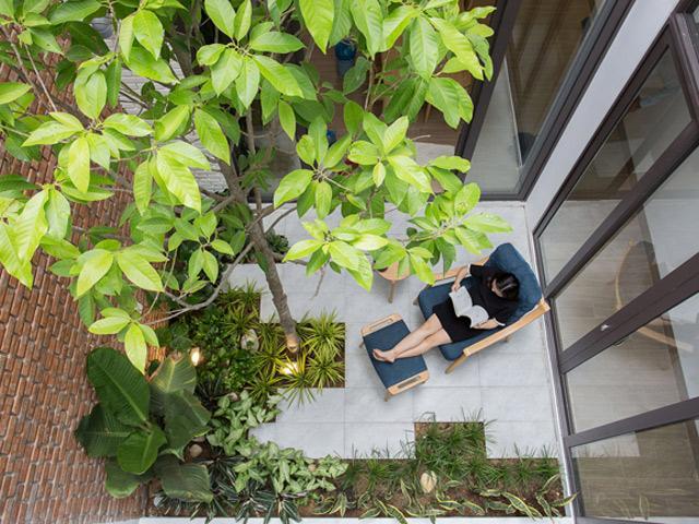 Nhà ống 2 tầng Đà Nẵng sáng trưng như không có nóc, trồng được cả vườn cây giữa nhà
