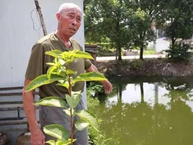 Vừa cứu bé trai đuối nước, cụ ông 80 tuổi lại phát hiện điều bất ngờ từ 30 năm trước