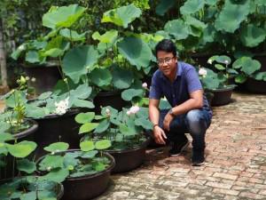 9X xứ Quảng hé lộ tuyệt chiêu độc, chỉ trồng sen một tháng đã bắt trổ bông rực rỡ