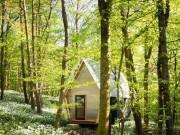 """Căn nhà ngũ giác đẹp lạ nằm bình yên giữa rừng hoa khiến người ta muốn """"bỏ phố vào rừng"""""""