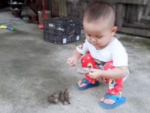 """Em bé má phúng phính gây sốt với màn cho chim sâu ăn """"cưng"""" hết sức"""