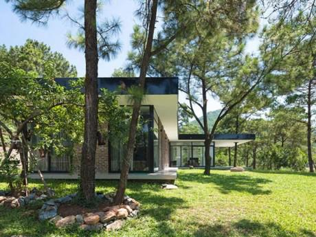 Chỉ một tầng mà đẹp như căn nhà giữa rừng thông Sóc Sơn này thì cần gì xây biệt thự?