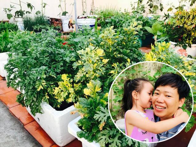 Mê rau sạch, ông bố luật sư biến sân thượng 20m² thành vườn rau sạch nhìn phát thèm