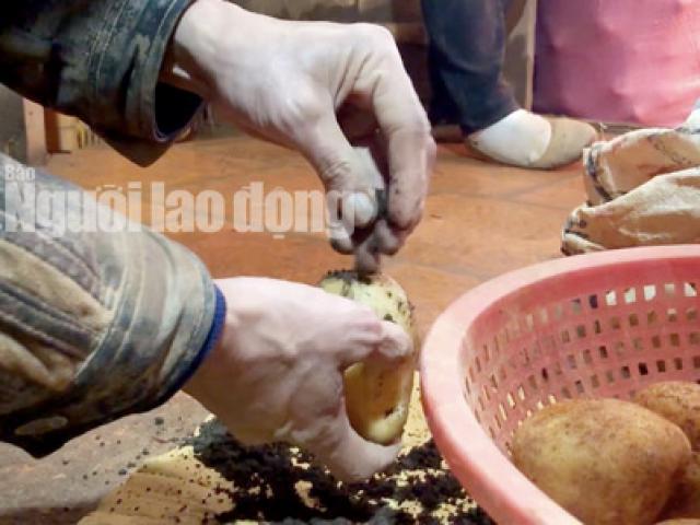 Video điều tra: Hãi hùng đường đi của nông sản Trung Quốc nhái Đà Lạt