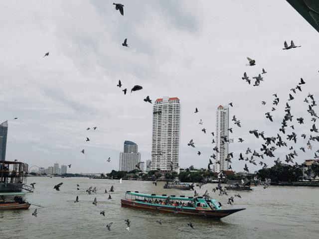 Khám phá trọn bộ kinh nghiệm du lịch Bangkok Thái Lan
