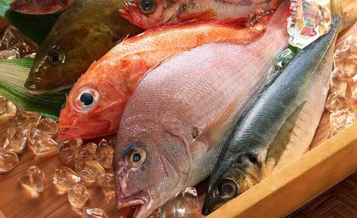 Bảo quản thực phẩm tươi lâu và cất giữ trong tủ lạnh đúng cách tránh rước bệnh vào người