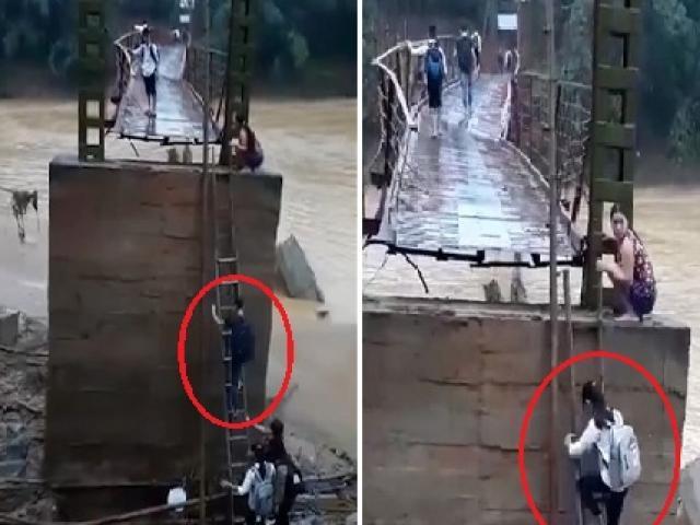 Học sinh Phú Thọ leo thang tre lên cây cầu sắp gãy để đi học