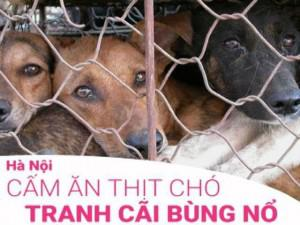 """Nhiều người phản đối luật cấm ăn thịt chó: """"Nếu Hà Nội cấm, tôi sẽ quay lưng với Hà Nội"""""""