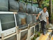 Cận cảnh: Ngắm hàng rào bằng 40 chiếc TV của lão nông ở Kiên Giang