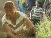 Hơn 10 năm tủi cực chỉ ăn, đẻ và đi trốn của người mẹ mang thai tới 12 lần