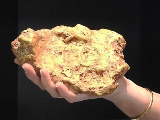 Sốc độc lạ: Bất ngờ đào được cục vàng nặng hơn 3kg, bán được 2,5 tỷ đồng