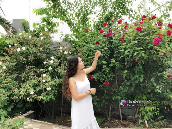 Chuyển hàng tấn đất làm ao sen, trồng hồng trên sân thượng, mẹ HN xây amp;#34;thiên đườngamp;#34; phủ kín hoa - 14