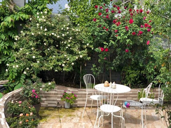 Chuyển hàng tấn đất làm ao sen, trồng hồng trên sân thượng, mẹ HN xây amp;#34;thiên đườngamp;#34; phủ kín hoa - 17