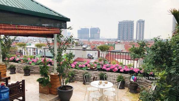 Chuyển hàng tấn đất làm ao sen, trồng hồng trên sân thượng, mẹ HN xây amp;#34;thiên đườngamp;#34; phủ kín hoa - 2