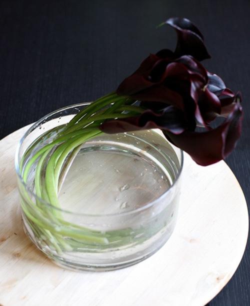 hoa dep 20-10: 3 mau hoa rum de cam - 13