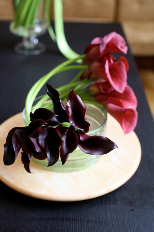 hoa dep 20-10: 3 mau hoa rum de cam - 15