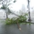 Cận cảnh bão số 11 tàn phá miền Trung