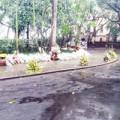 Hoa vẫn xếp tầng trong vườn nhà Đại tướng