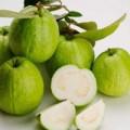 Sức khỏe - Kho dinh dưỡng từ ổi