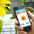 Eva Sành điệu - Công nghệ cảm biến hỗ trợ bạn chăm sóc cây cối