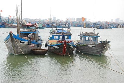 Dân miền Trung bắt đầu chạy siêu bão HaiYan - 3