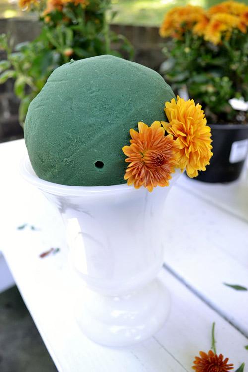cam hoa cuc de ban dep trong 5 phut - 4
