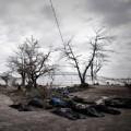 Tin tức - Nóng tuần qua: Philippines tan hoang sau siêu bão