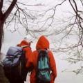 Tin tức - Hà Nội có mưa, nhiệt độ giảm thấp